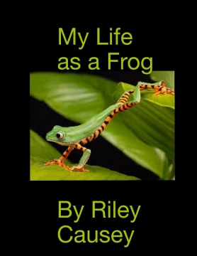 My life as a frog