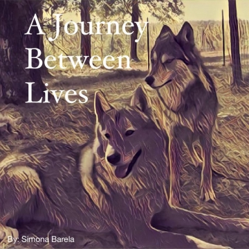 A Journey Between Lives