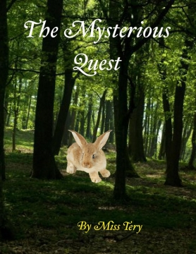 The Mysterious Quest