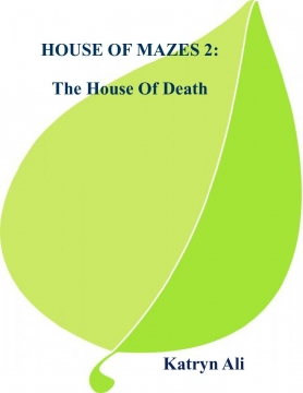 HOUSE OF MAZES 2