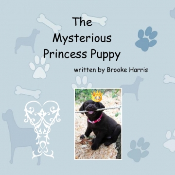 The Mysterious Princess Puppy