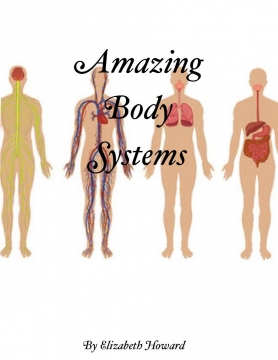 Amazing Body Systems