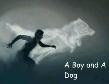 The Boy and Dog