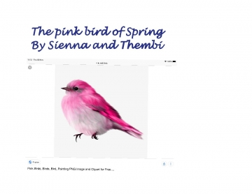 The pink bird of Spring