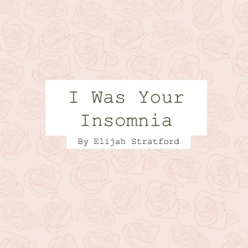 I Was Your Insomnia