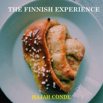 The Finnish Experience