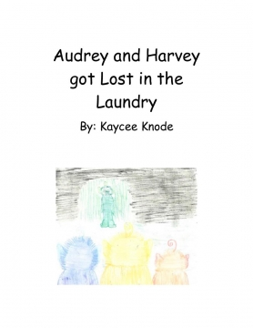 Audrey and Harvey got Lost in the Laundry