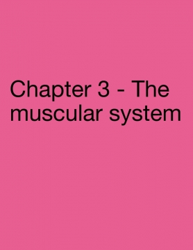 The adventures of the body system