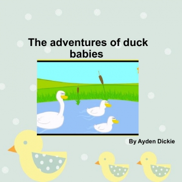 The adventures of duck babies