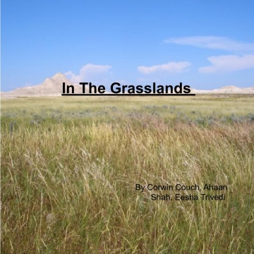 In the grasslands