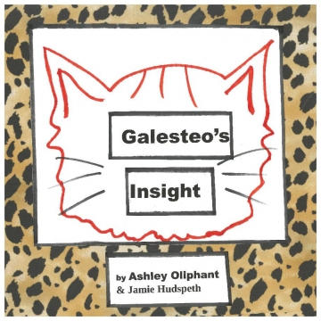 Galesteo's Insight