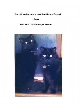 The Life and Adventures of Bubble and Squeak    -   Book 1