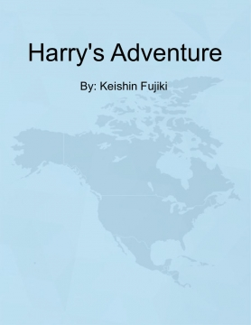Harry's Adventure