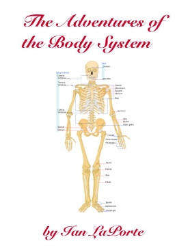 The Adventure of the Body System
