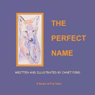 The Perfect Name: Written and Illustrated by Janet Ford