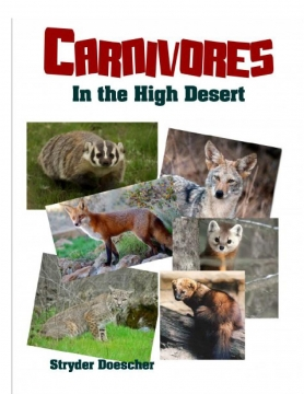 Different Facts About Carnivores in the High Desert