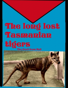 The long lost Thylacines