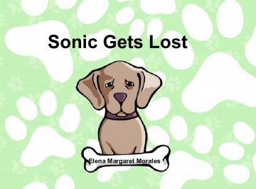 Sonic Gets Lost
