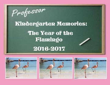 Kindergarten Memories: The Year of the Flamingo