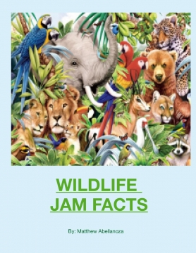 WILDLIFE JAM FACTS