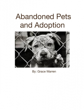 Abandoned Pets and Adoption