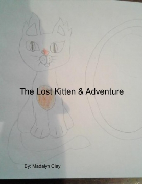 The Lost Kitten And Its Big Adventures