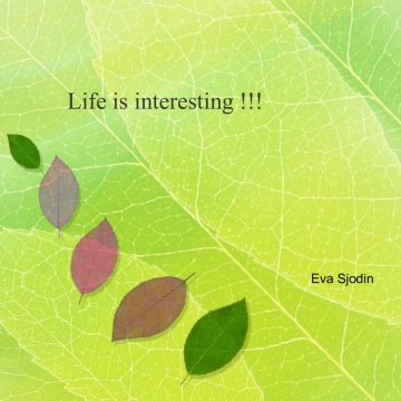 Life is interesting!!!
