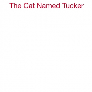 The Cat Named Tucker