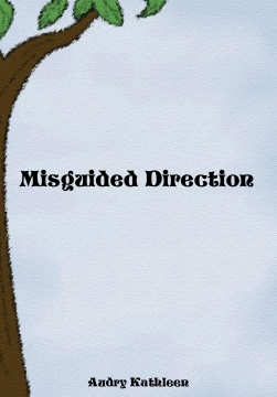 Misguided Directions