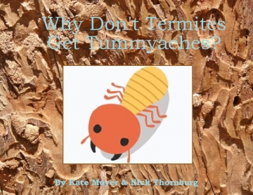 Why Don't Termites Get Tummyaches?