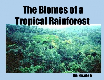 The Biomes of a Tropical Rainforest
