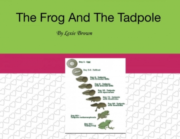The Frog And The Tadpole