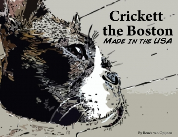 Crickett the Boston