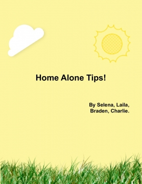 Home Alone Tips!