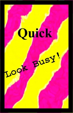 Quick Look Busy! Journal
