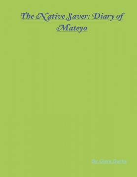 The Mission Saver: Diary of Mateyo