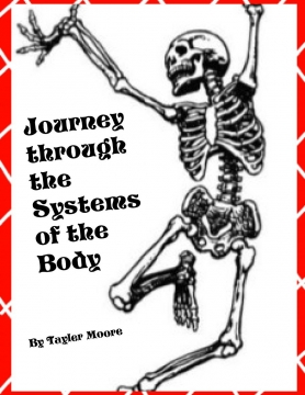 Journey through the Systems of the Body