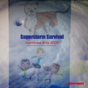 Superstorm Survival