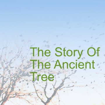 The Story of The Ancient Tree