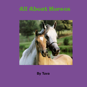 All About Horses