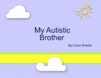 My Autistic Brother