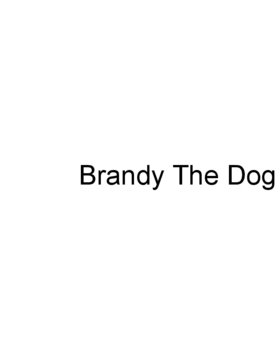Brandy The Dog