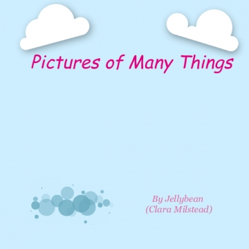 Pictures of Many Things