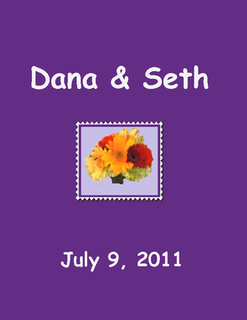 Dana & Seth's Wedding