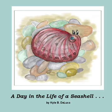 A Day in the Life of a Seashell . . .