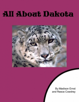 All About Dakota