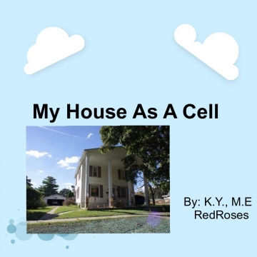 My house as a cell