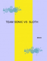 TEAM SONIC VS TEAM SLOTH