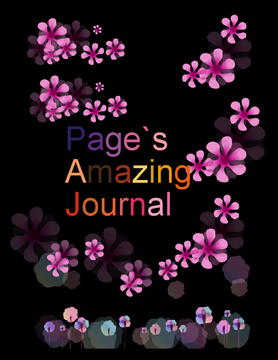 Page`s Amazing Journal