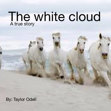 The white cloud